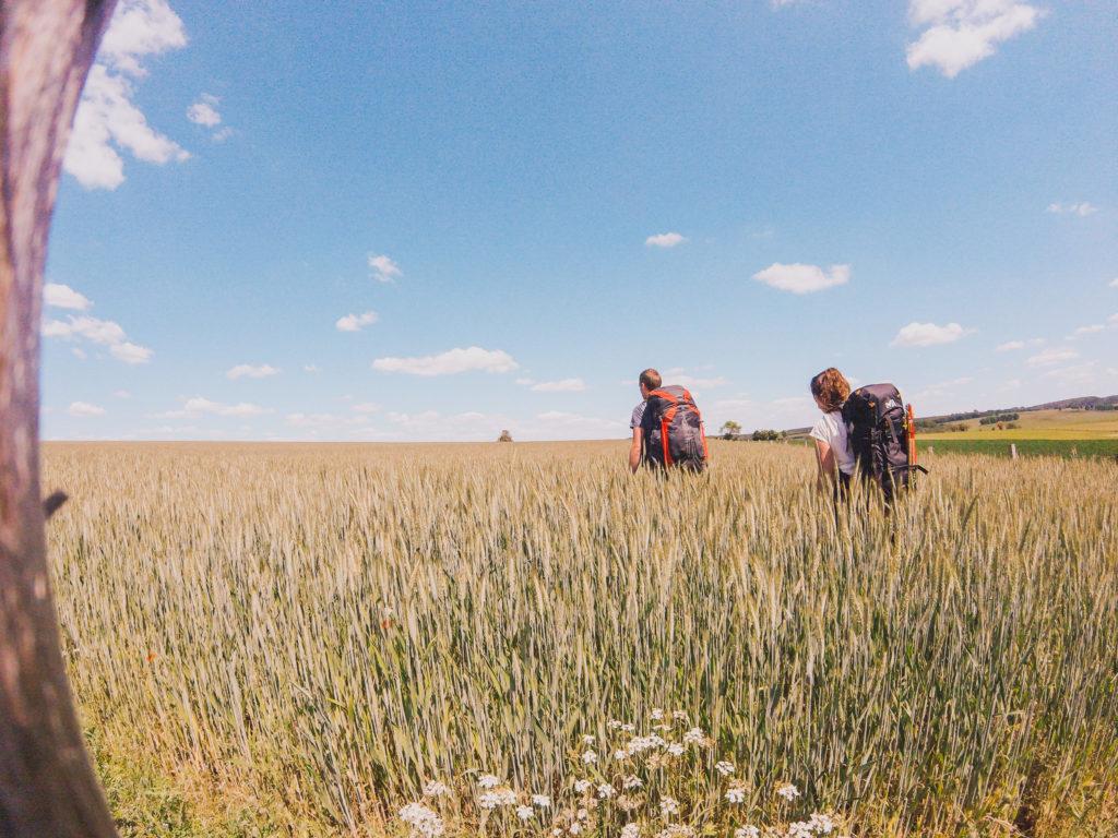 champs gouvy randonnée
