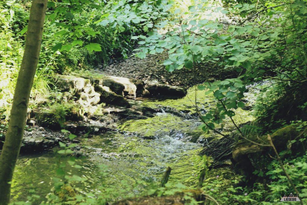 balade aux étangs de la julienne liège