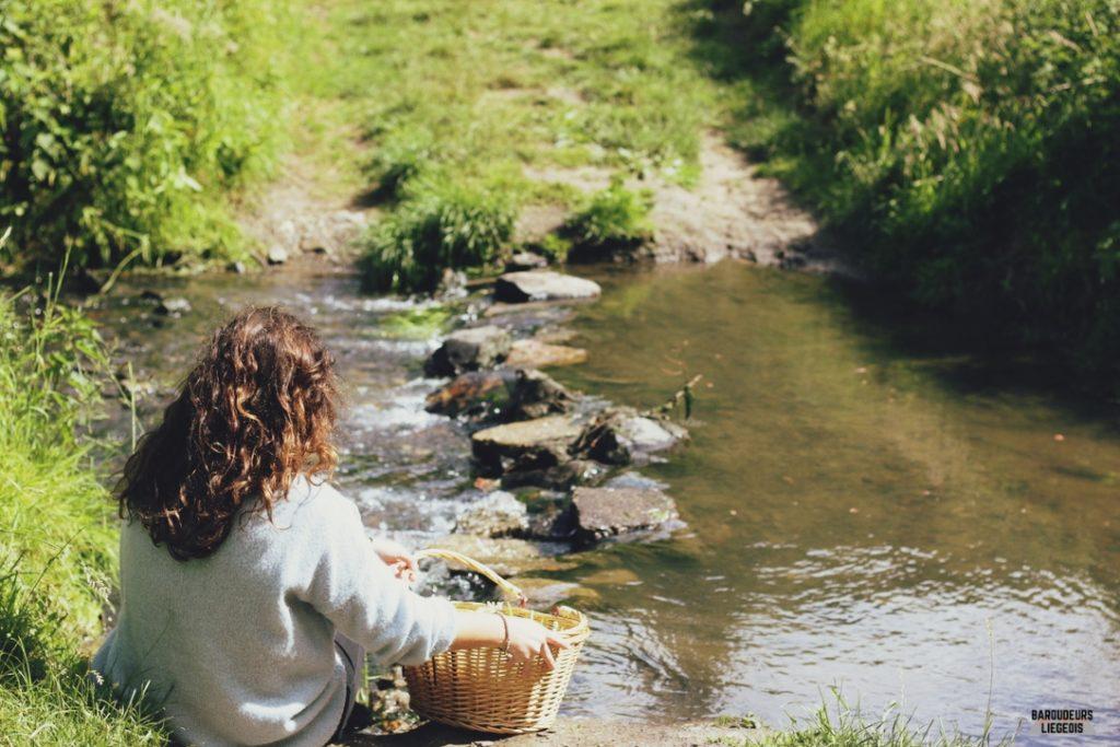 balade aux étangs de la julienne
