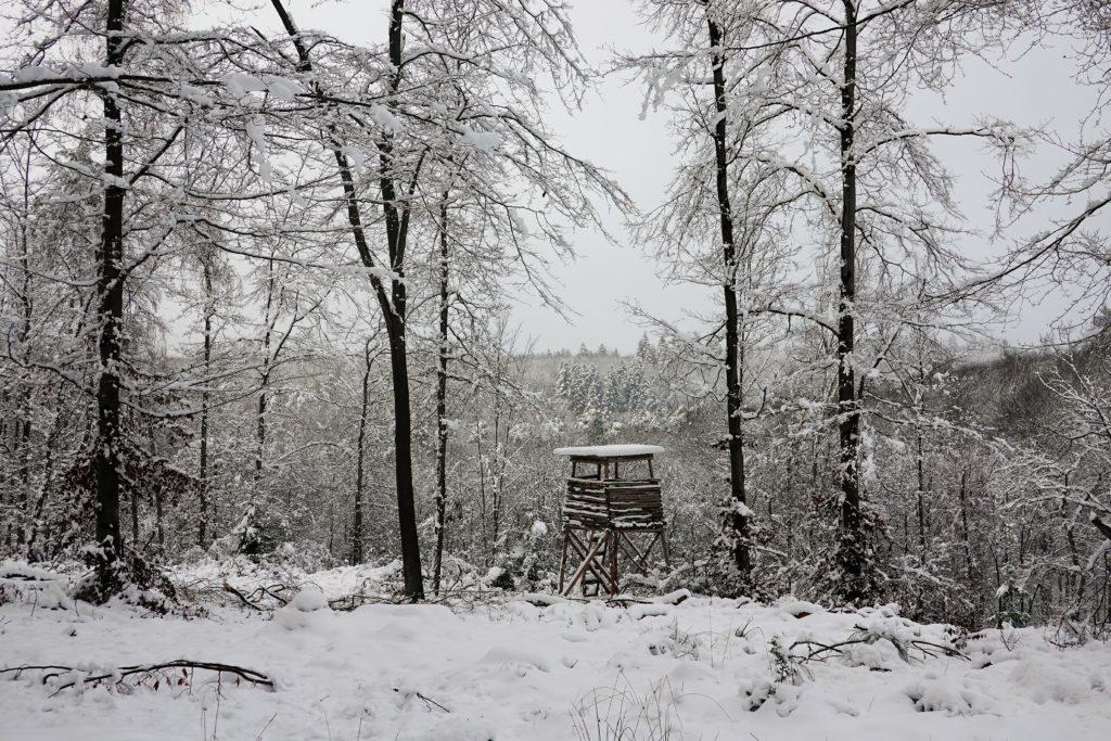 Balade avec de la neige dans les Ardennes aux portes de la ville de Spa
