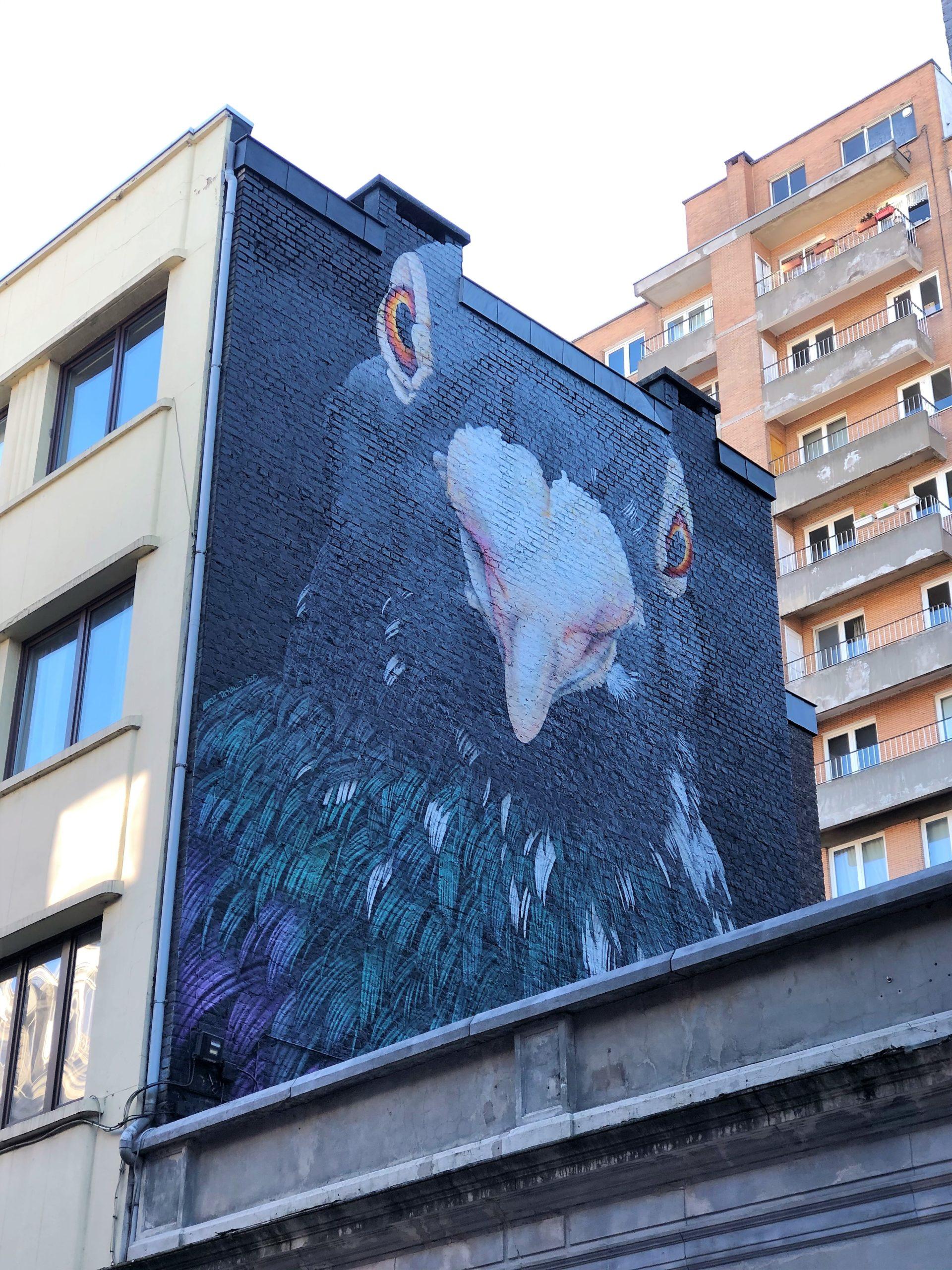 balade street art à liège : la fresque pigeon